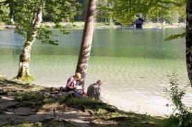 See Bohinj in Slowenien