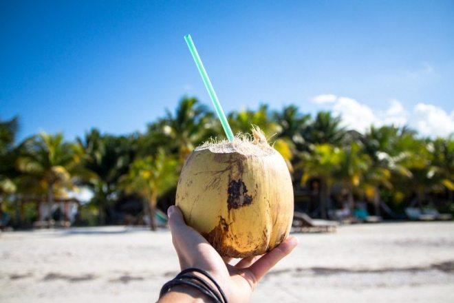 Tipp: Kokosnuss am Strand der Isla Holbox