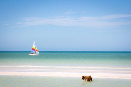 Isla Holbox Mexiko: Paradies
