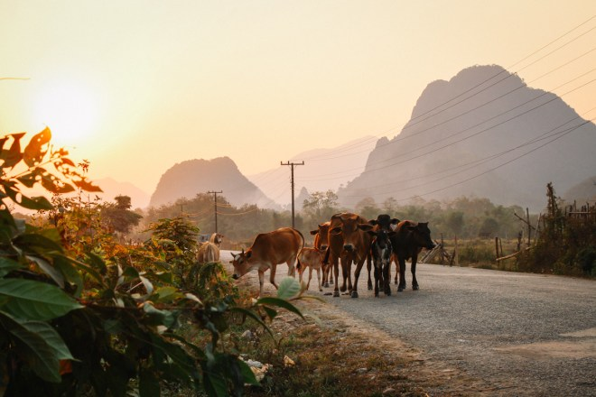 Weltreise Highlights - tolle Tage in Vang Vieng in Laos