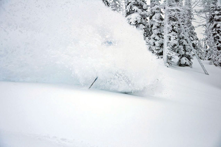 FWA deep powder