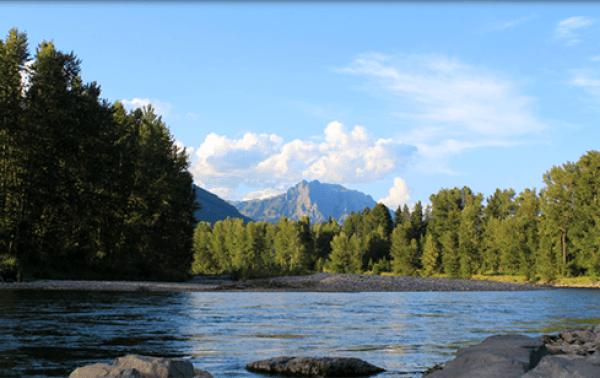 Fernie Elk River