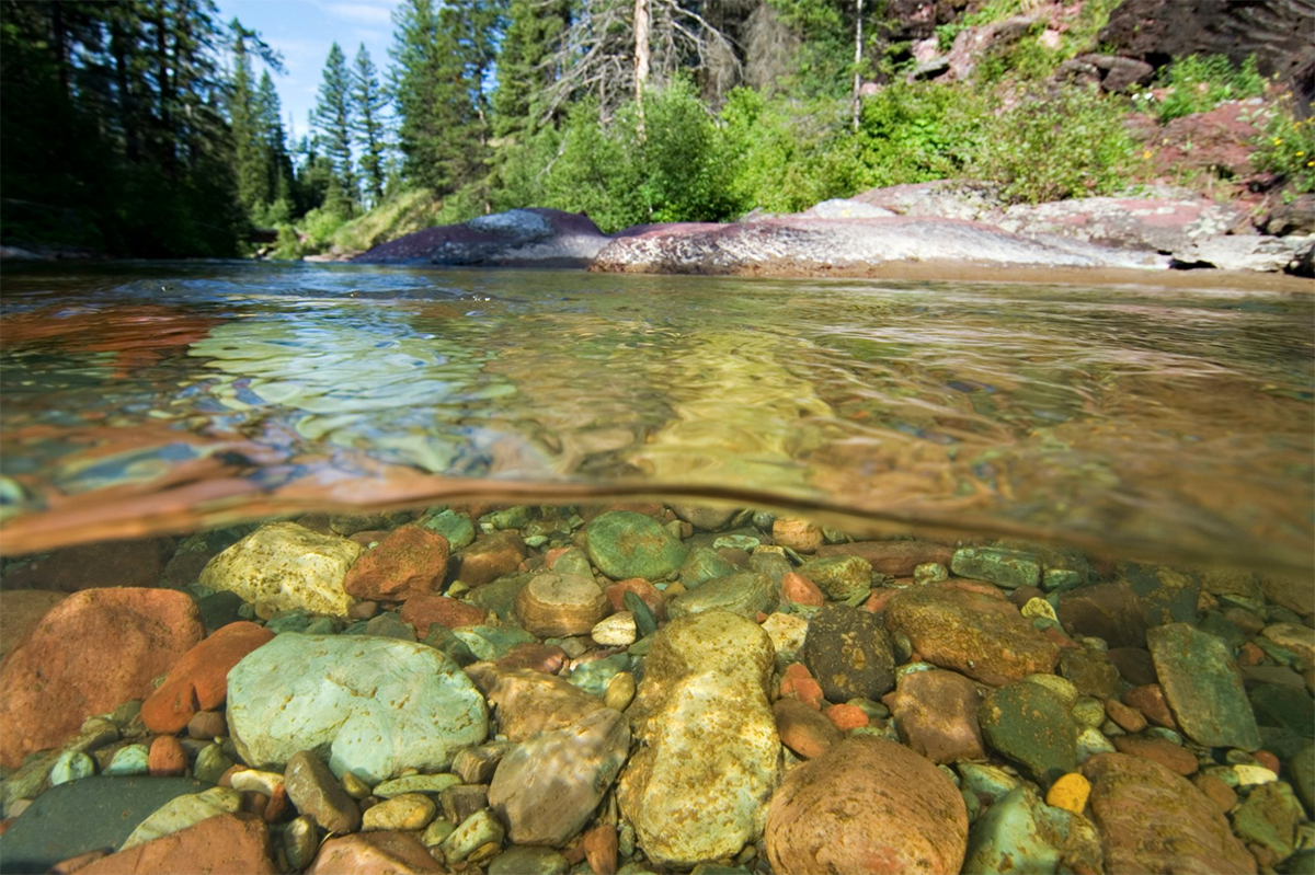 Invisible rivers beneath our feet with Dr. Ric Hauer