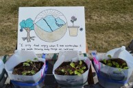 Wildsight earth day plants