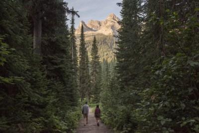 Guided Hike