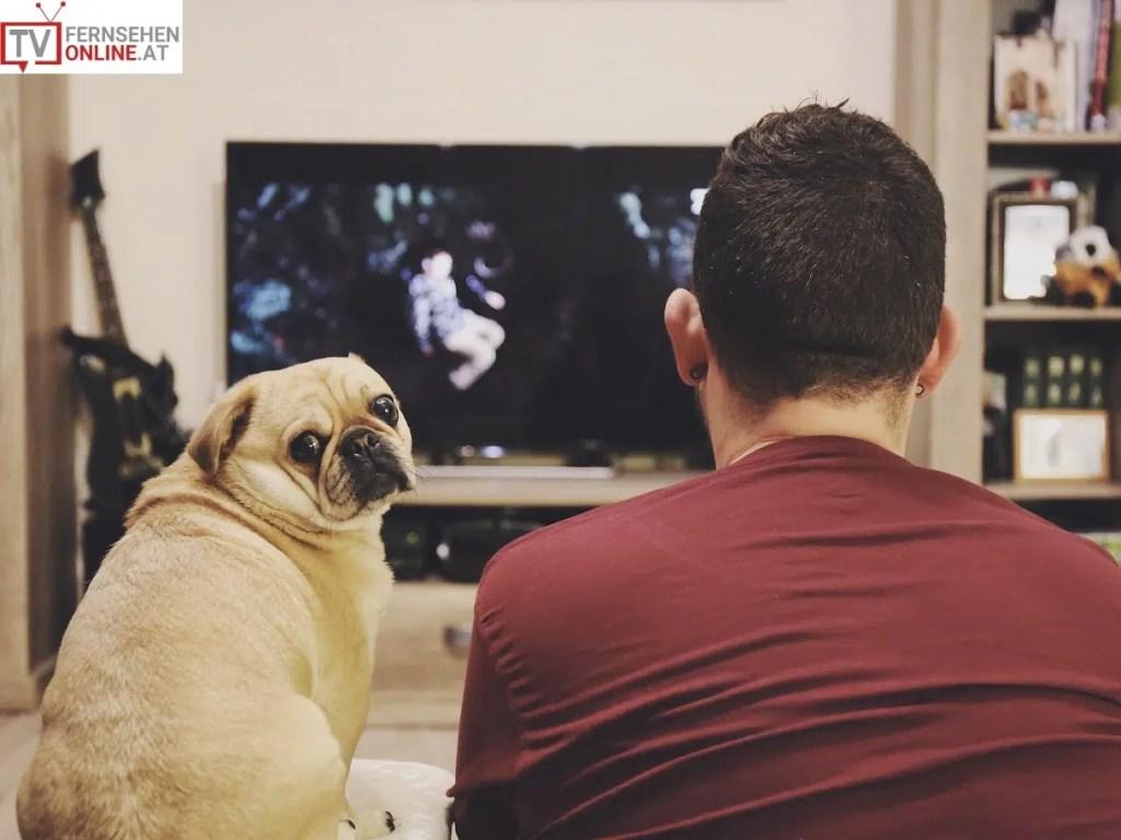 Von analogem zu digitalem TV, Fernsehen online, free tv