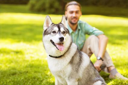 <strong>Der Hund ist der beste Freund des Menschen</strong><br/>© Rock and Wasp - Fotolia.com