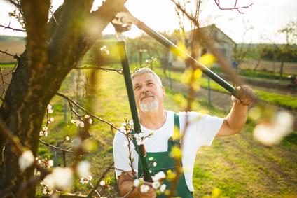 <strong>Pflegen, sanieren oder bauen Sie gerne Grünanlagen? Dann ist der Fernstudiengang Garten- und Landschaftsbau genau das richtige für Sie. </strong><br /> © lightpoet - Fotolia.com
