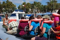 00_Sitzplatz-Speedboat-Delphin-Beobachtung