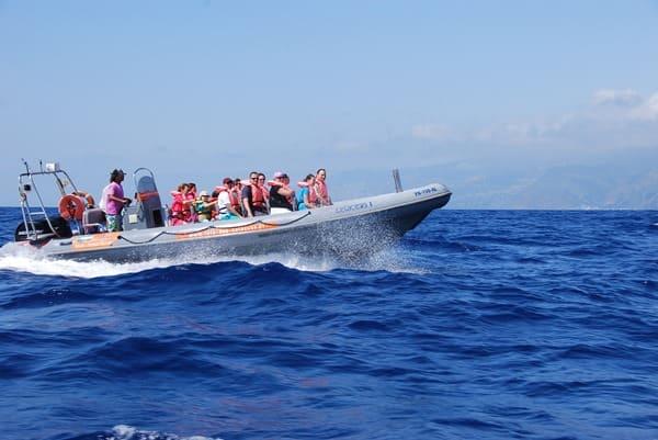 05_Speedboat-Madeira