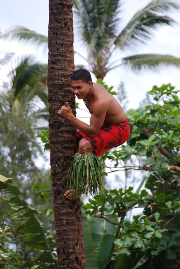 02_Polynesian-Cultural-Center-Coconut-Show