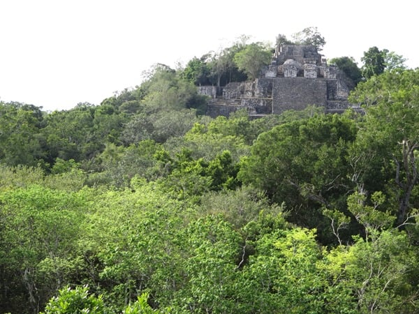 Calakmul Mexiko Maya Hochburg Struktur II Pyramide 2 Urwald Dschungel