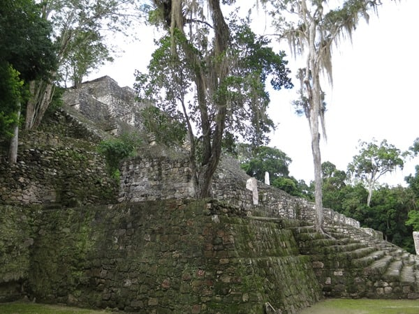 Calakmul Mexiko Maya Hochburg Struktur I Pyramide 1 Urwald