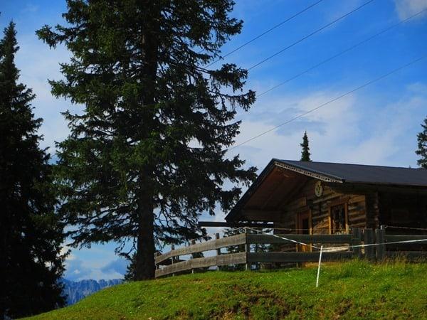 12_Alm-oberhalb-Rosshuette-Seefelder-Spitze-Tirol-Oesterreich