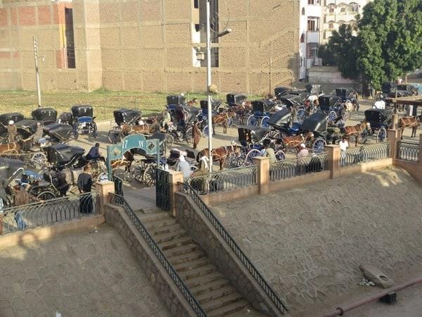 Edfu Kutscher Fiaker Ägypten Nil Nilkreuzfahrt