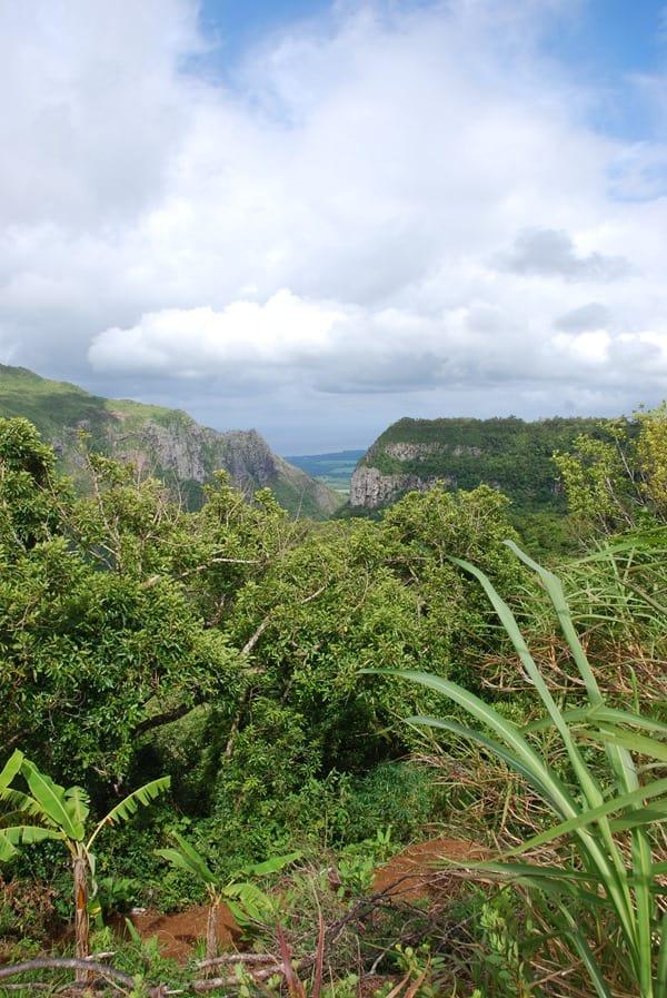 07_Berge-im-Westen-von-Mauritius-Nature-Trails-Ausflug