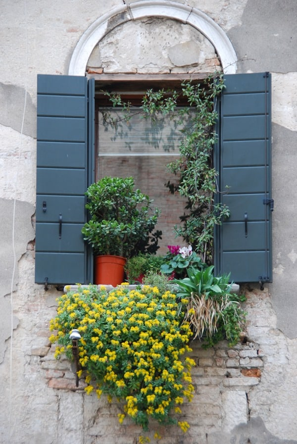 22_Fenster-in-Venedig-Italien