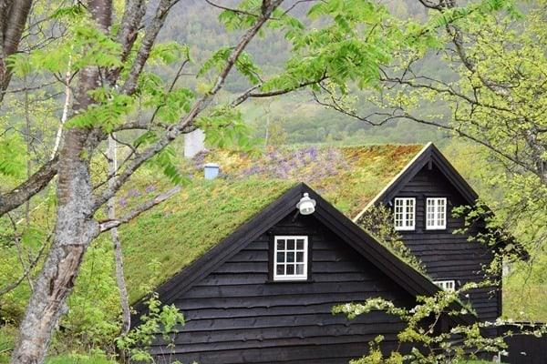 17_Norwegische-Haeuser-Grasdach