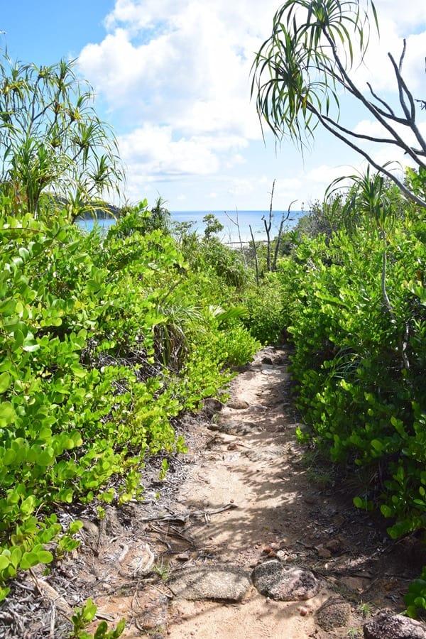 11_Wanderweg-im-Naturschutzgebiet-Marine-National-Park-Curieuse-Seychellen