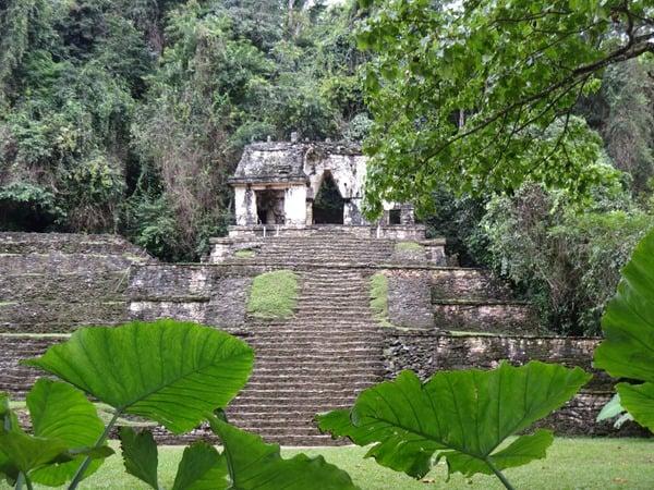 Palenque Mexiko Sehenswürdigkeiten Kreuztempel Maya Stätte Ruine Urwald