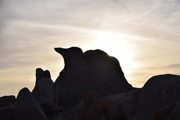 14_bizarre-Felsen-im-Sonnenuntergang-am-Capo-Testa-Sardinien-Italien