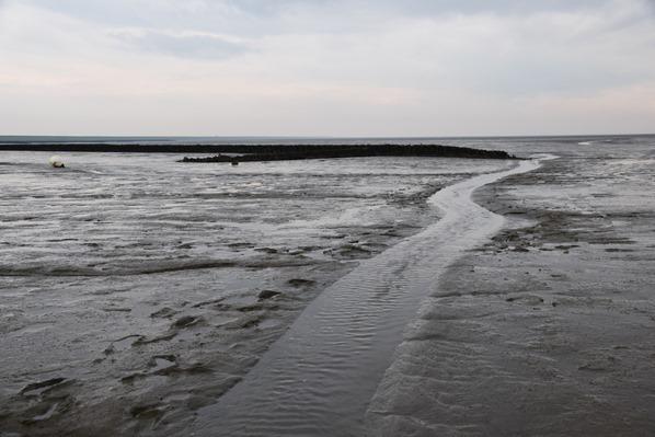 Schleswig Holstein Wattwanderung Nationalpark Wattenmeer Priel Dithmarschen Nordsee Urlaub