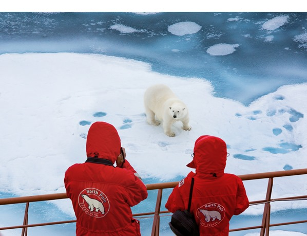 Eisbrecher-Kreuzfahrt-Urlaub-Nordpol-Eisbaer