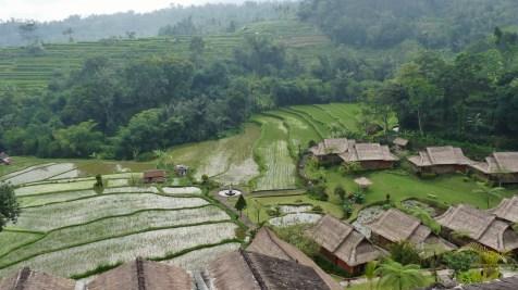 2011-03-18 Bali 122