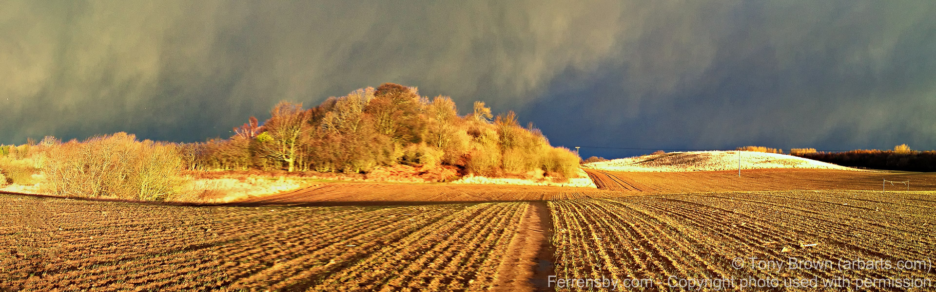 ferrensby_dawn-tony_brown