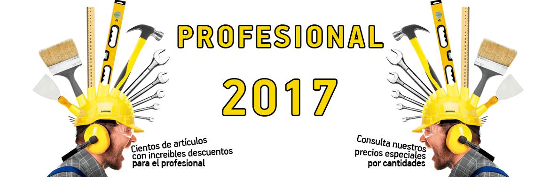 Profesional 2017 I
