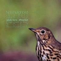 New Neighbird - de Zanglijster <br /> interpretatie in 3 delen <br /> Polyphonic Transcription