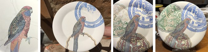 S Bowers process shots of rosella plate