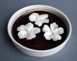 "Julie Bartholomew, ""Rarely Seen, Hibbertia Marginata"" 2013, porcelain, copper red glaze, decals, 1.5 x 3.5""."
