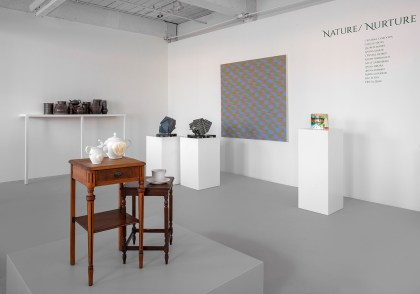 """Nature/Nurture"" Installation View, 2020."