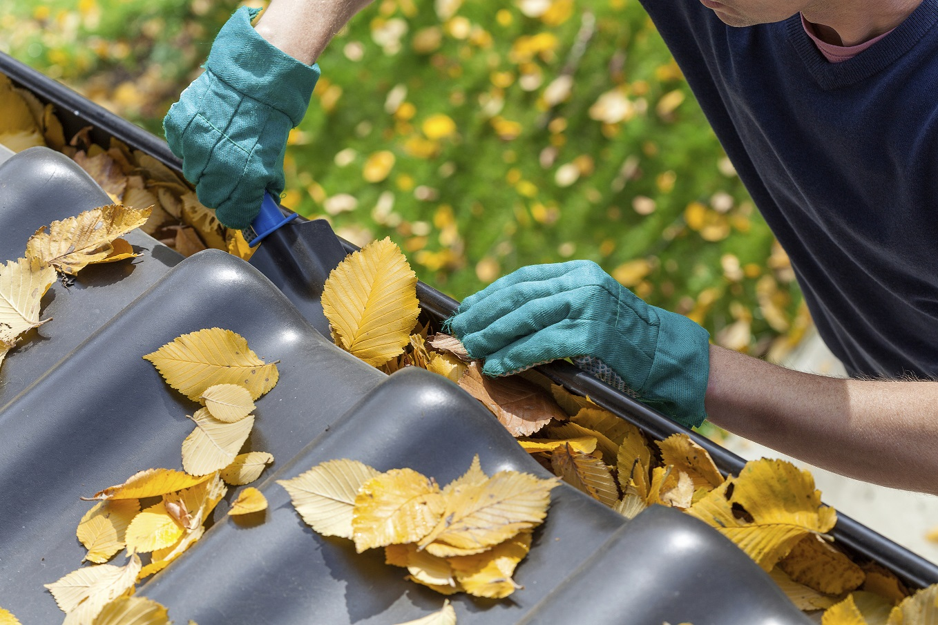 5 Reasons Why You Should Avoid Clogged Gutters
