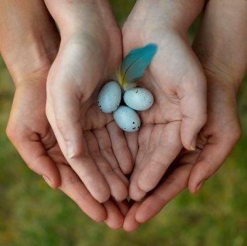 Natural Fertility Treatments Fertility Road Magazine