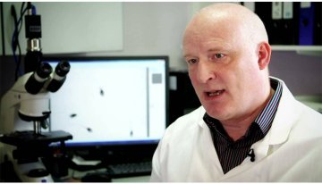 Professor Allan Pacey Discusses Male Fertility Problems Ahead of The London Fertility Show