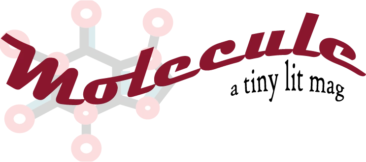 """Logo which reads """"Molecule a tiny lit mag"""""""