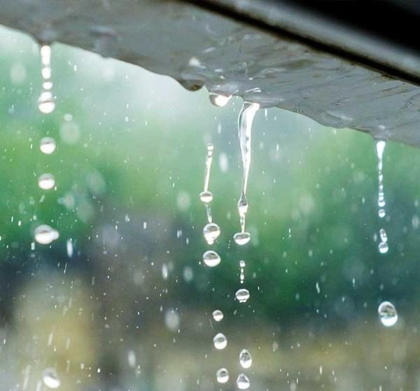 Sobre las predicciones de lluvia