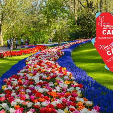 Carte du festival des tulipes