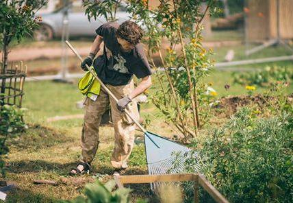 Its time to start sprucing up the Garden!...