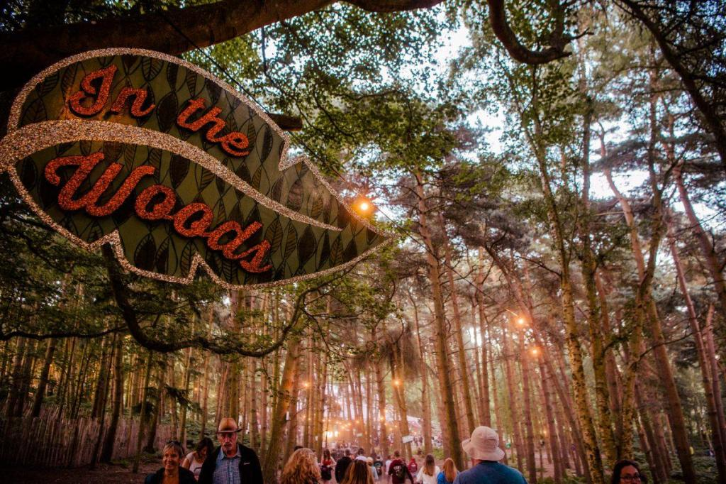Summer evenings getting lost In The Woods…...