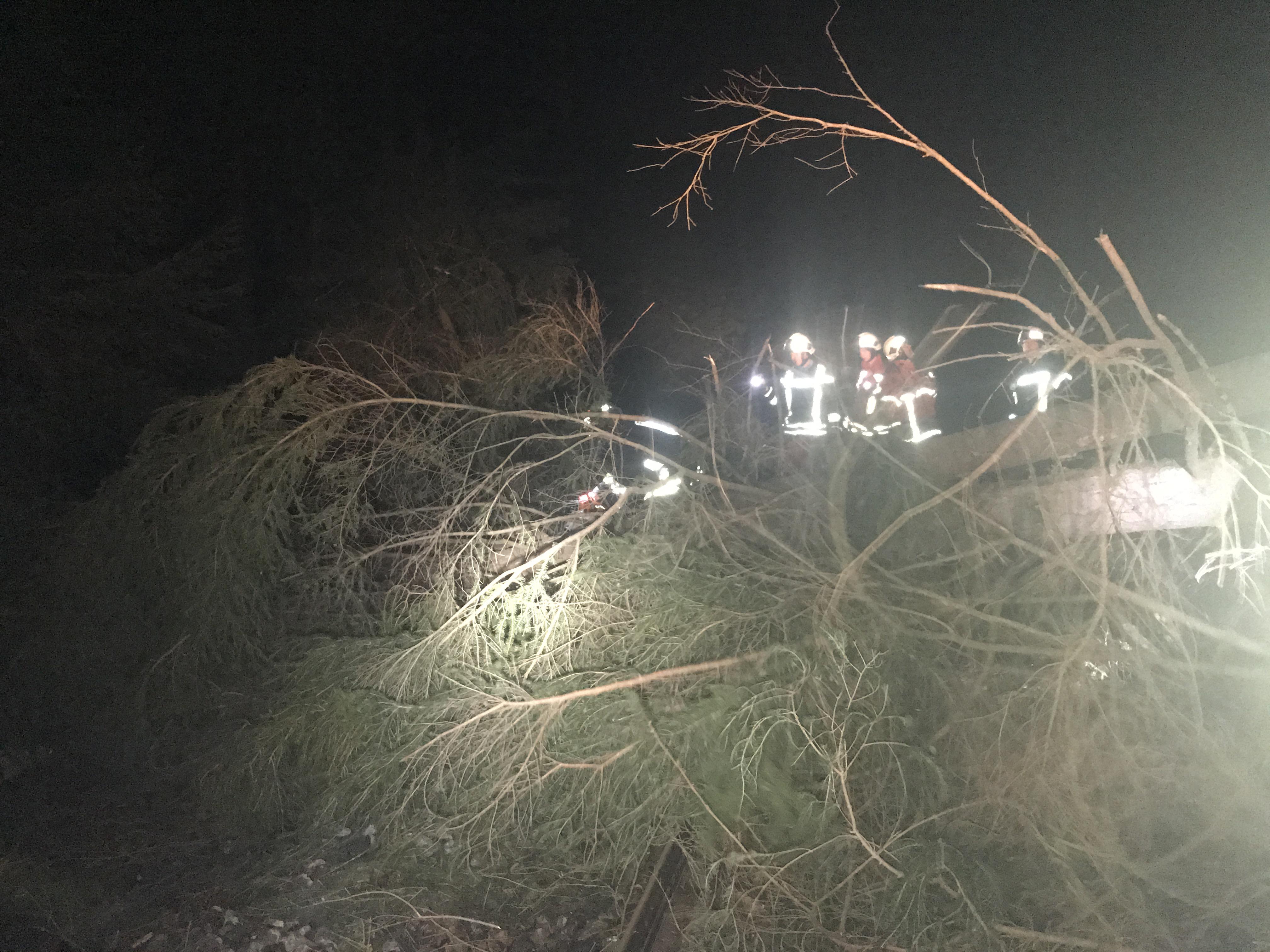 Umgestürzte Bäume auf Gleis