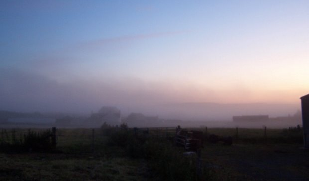 Fevered Mutterings Image - Fog on Westray - Mike Sowden