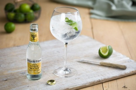 Gin and Tonic Recipe | How to Make | Fever-Tree