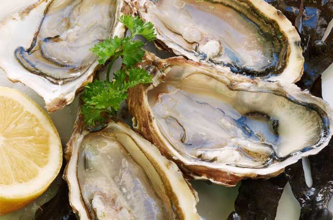 Our Favorite Places for Local Oysters in Wilmington NC