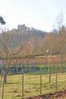 Traumhafter Blick aufs Hambacher Schloss