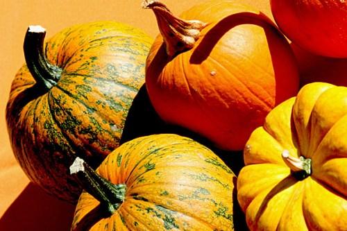 halloween_pumpkins_s