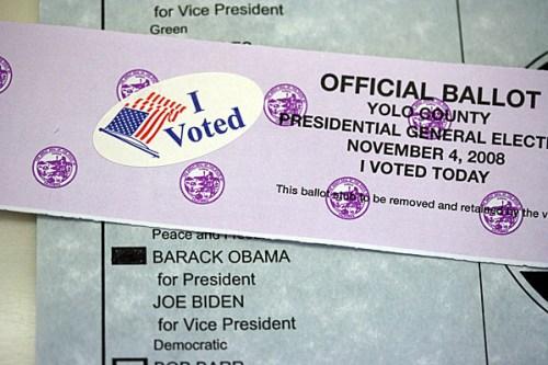 i_voted_obama_3s