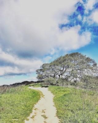 petaluma_hike_01
